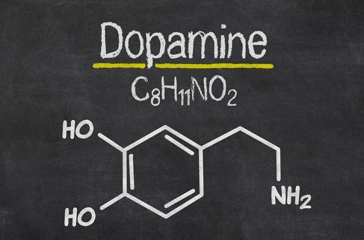 https://triptherapie.nl/wp-content/uploads/2019/01/dopamine.jpg
